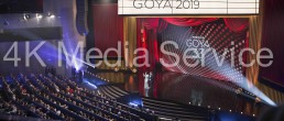Alejandro Martín Producciones, Premios Goya 2019, Operador de Cámara.